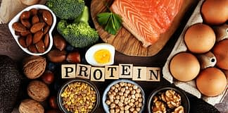 best protein for weight loss